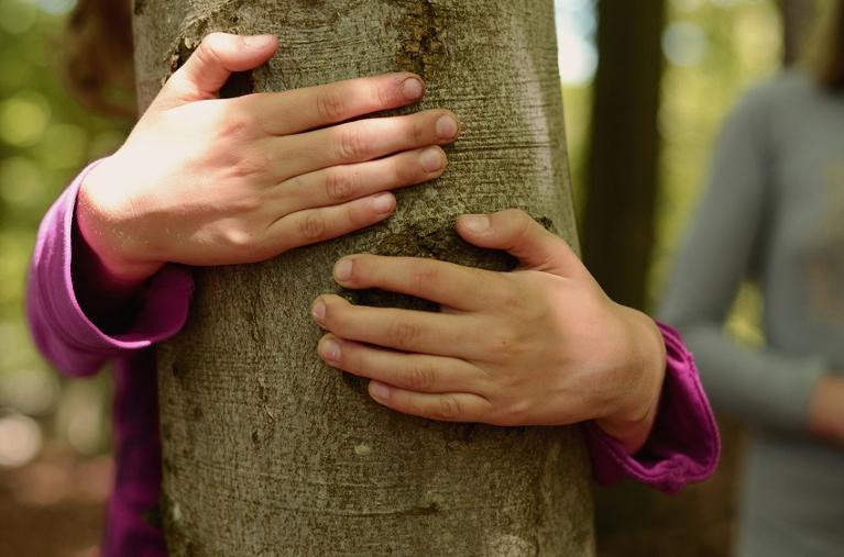 Waldpädagogik_Steigerwald_Zentrum_Handthal_Kinderhände