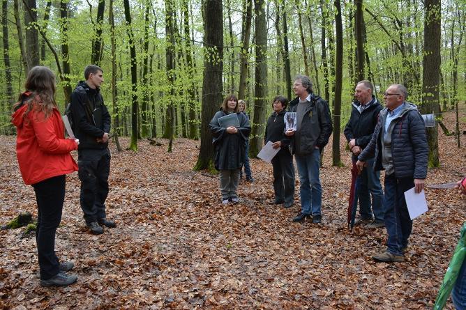 Wald_Waldführung_Steigerwald-Zentrum
