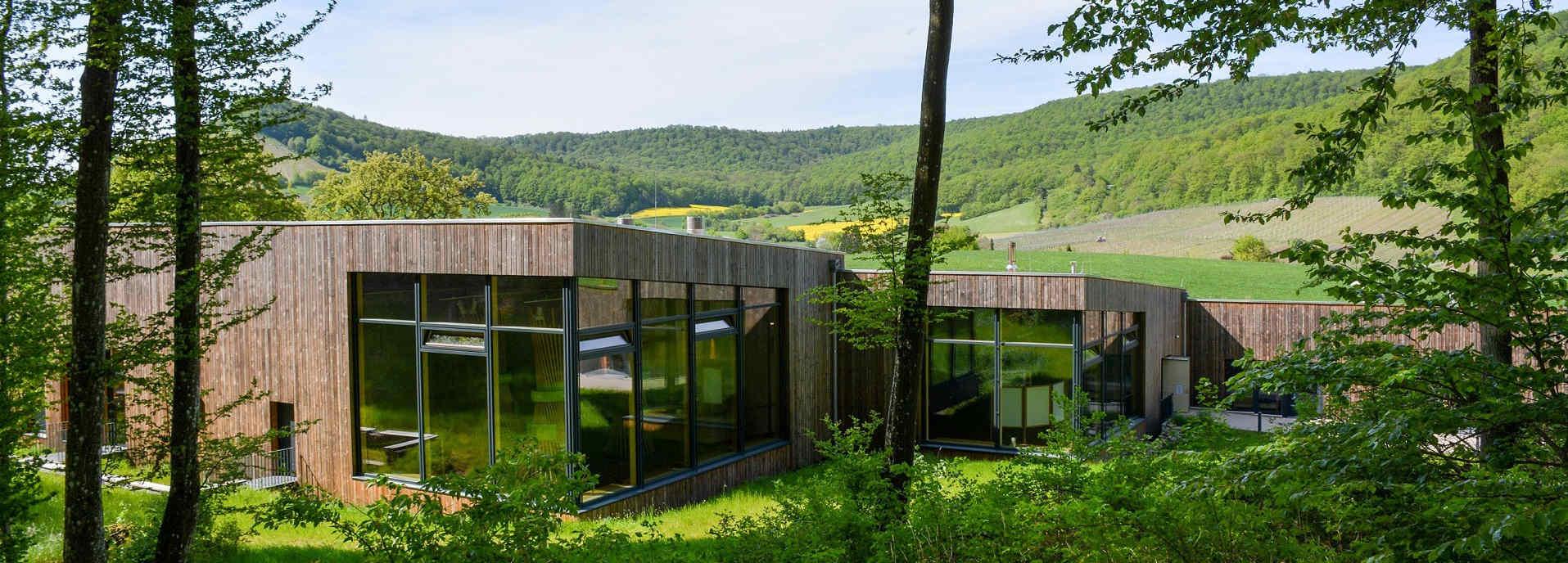 Steigerwald-Zentrum_Wald-1-Titel-Web-Startseite