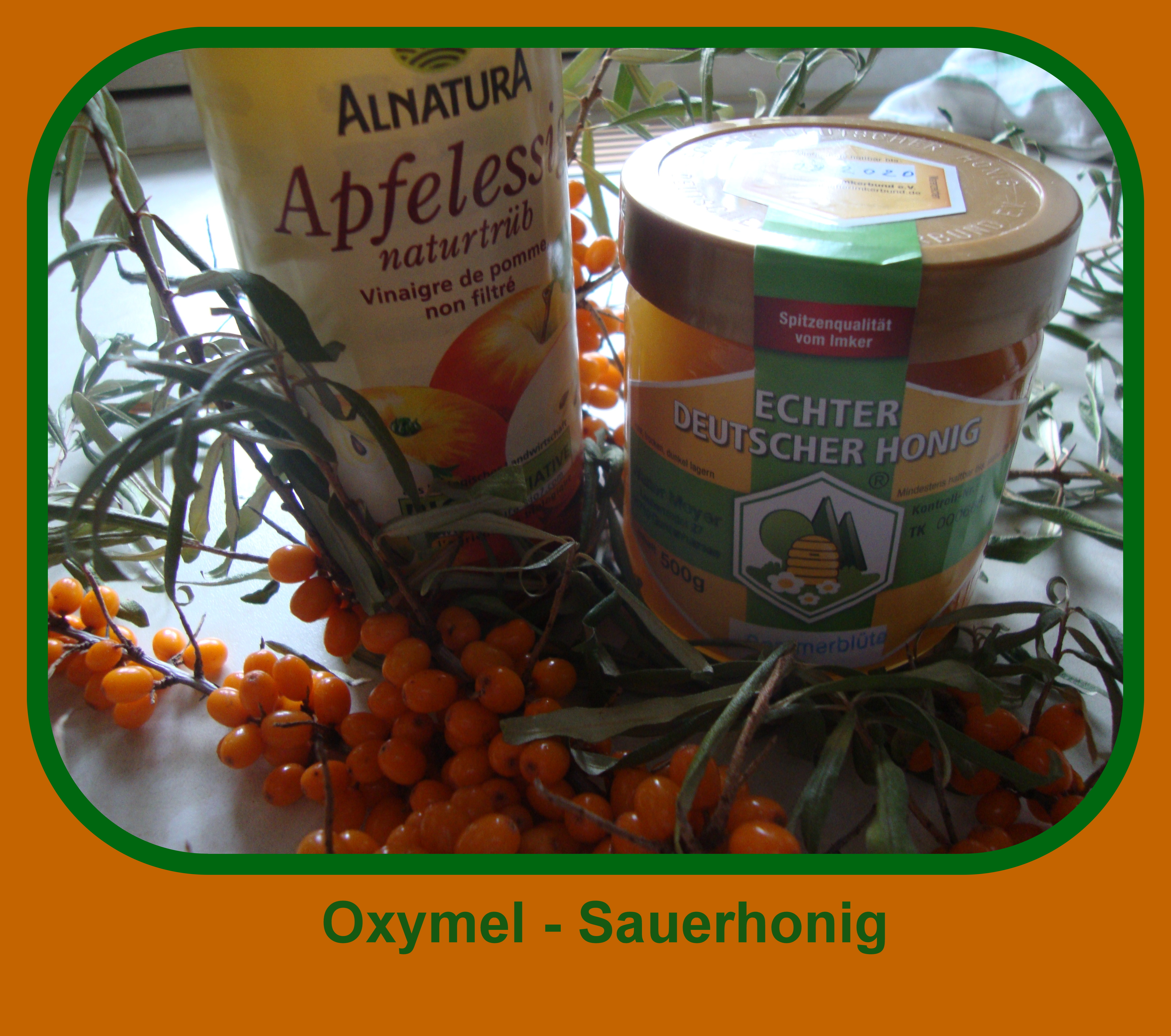 Oxymel – das alte Hausmittel »Sauerhonig« neu entdeckt (25. Oktober)